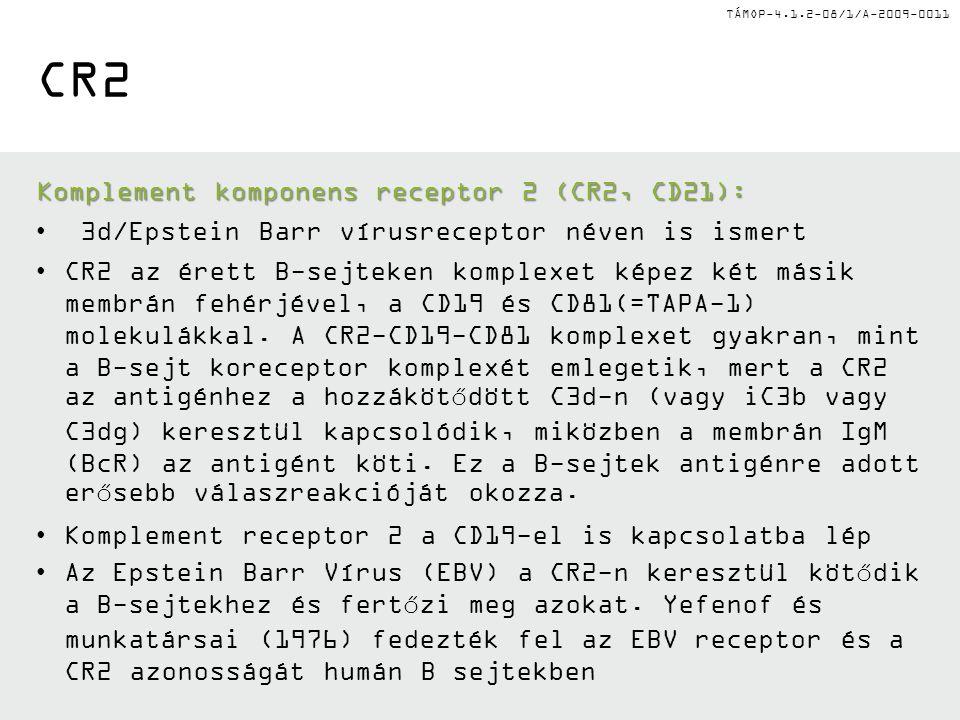 TÁMOP-4.1.2-08/1/A-2009-0011 CR2 Komplement komponens receptor 2(CR2, CD21): Komplement komponens receptor 2 (CR2, CD21): 3d/Epstein Barr vírusreceptor néven is ismert CR2 az érett B-sejteken komplexet képez két másik membrán fehérjével, a CD19 és CD81(=TAPA-1) molekulákkal.