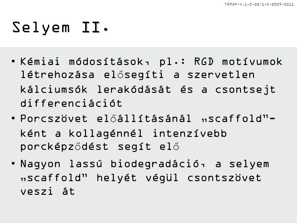 TÁMOP-4.1.2-08/1/A-2009-0011 II. Selyem II.