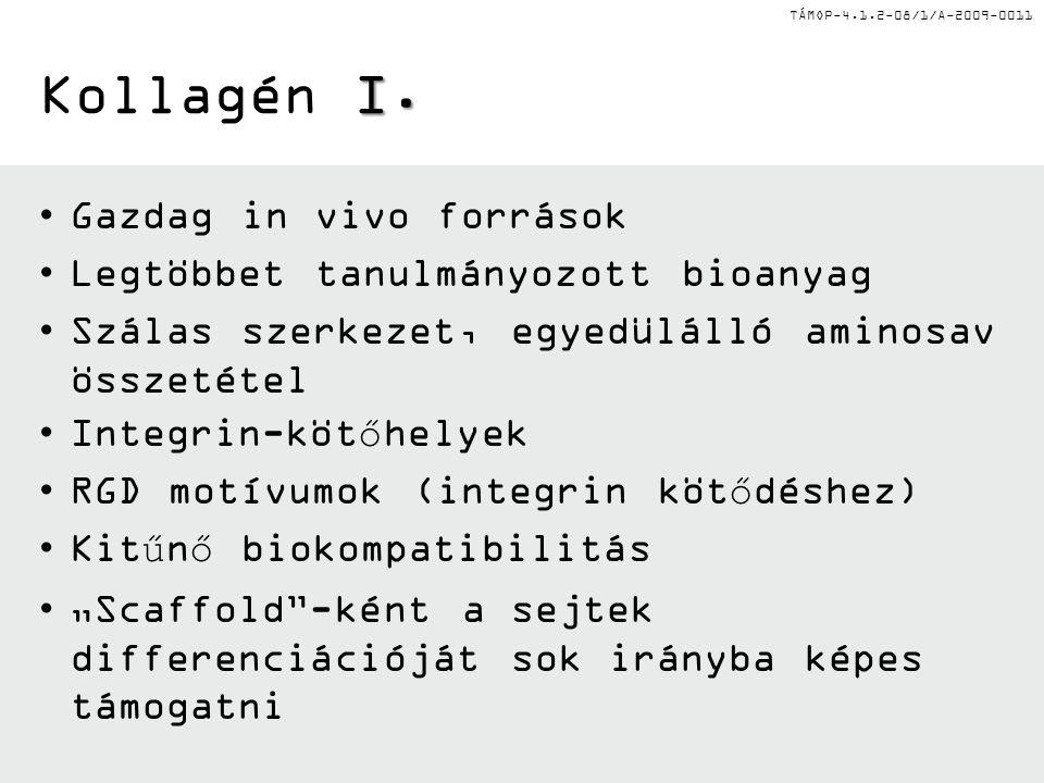 TÁMOP-4.1.2-08/1/A-2009-0011 I. Kollagén I.