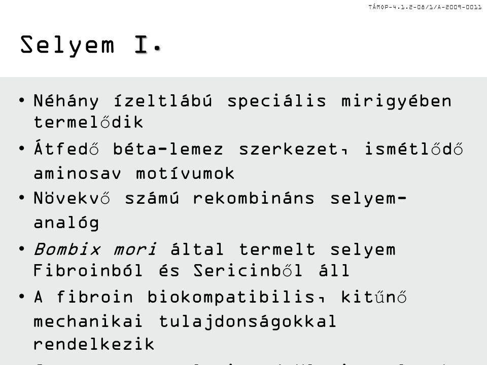 TÁMOP-4.1.2-08/1/A-2009-0011 I. Selyem I.