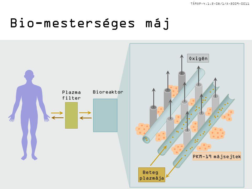 TÁMOP-4.1.2-08/1/A-2009-0011 Bio-mesterséges máj Betegplazmája Oxigén PKM-19 májsejtek PlazmafilterBioreaktor
