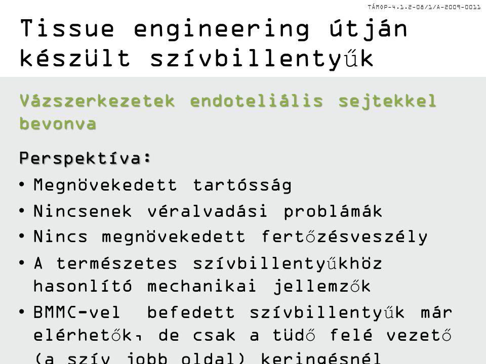 TÁMOP-4.1.2-08/1/A-2009-0011 II.Autológ kondrociták beültetése (ACI) II.