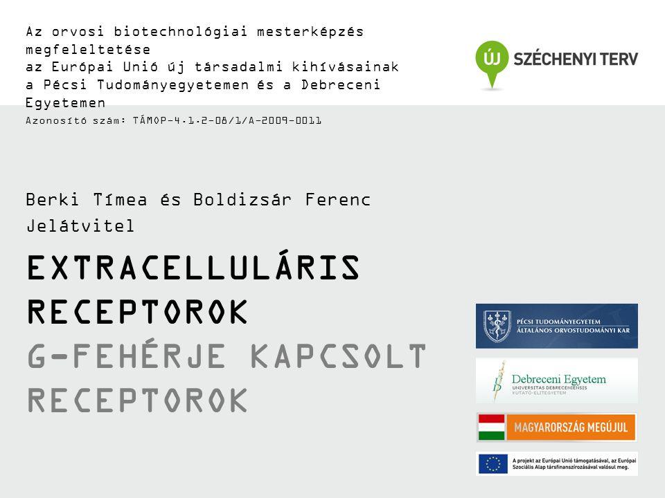 TÁMOP-4.1.2-08/1/A-2009-0011 7-transzmembrán receptorok szerkezete (7-TM) Ligand-kötés G  C-terminális farok egyéb G  felszínek Hélix 8 (G  -kötés) G  -kötés Interakciós felület IL1IL2IL3 EL1EL3EL2 Extracelluláris hurkok (EL1-3) Intracelluláris hurkok (IL1-3) N C GRK foszforiláció (Deszenzitizáció) PKC foszforiláció (Deszenzitizáció) PKC foszforiláció (Deszenzitizáció) Palmitiláció (Lipid raft lokalizáció) N-Glikoziláció (Receptor folding, trafficking ) E/DRY motívum (Receptor aktivitás és protein-protein interakció) Plazma membrán TM 1 TM 2 TM 3 TM 4 TM 5 TM 6 TM 7 Transzmembrán hélix (TM1-7) TM 4