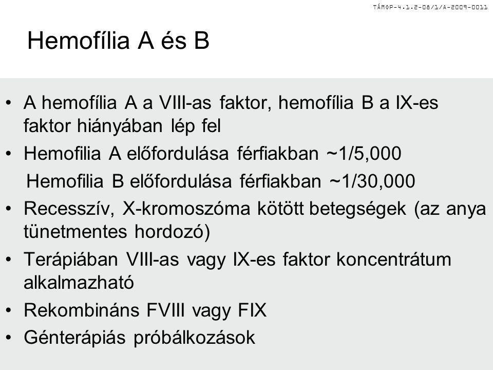 TÁMOP-4.1.2-08/1/A-2009-0011 Hemofília A és B A hemofília A a VIII-as faktor, hemofília B a IX-es faktor hiányában lép fel Hemofilia A előfordulása fé
