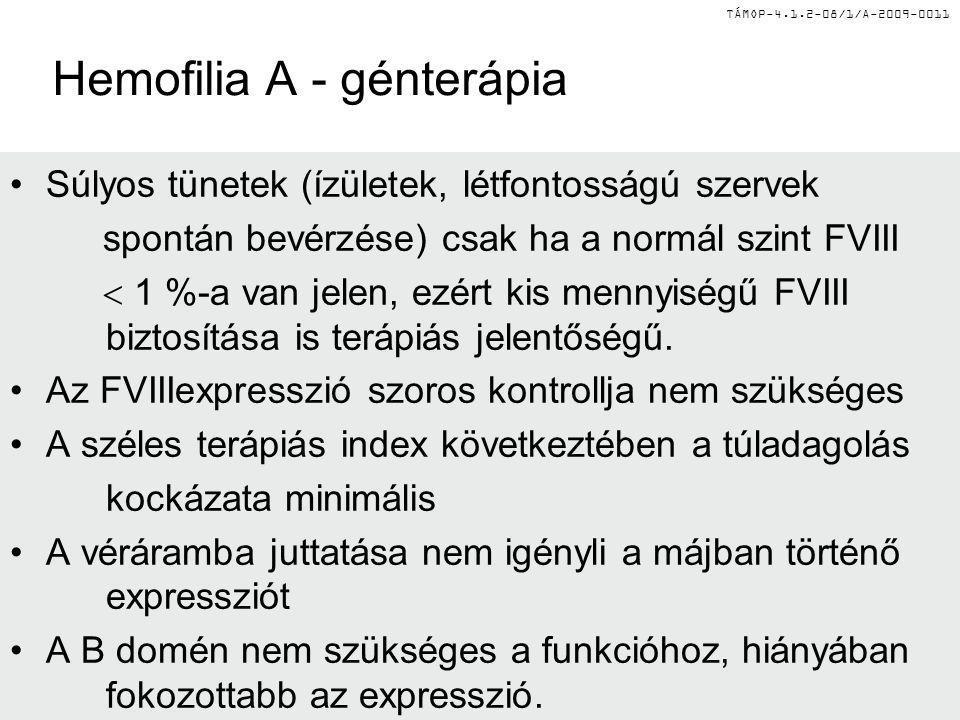 Hemofilia A - génterápia Súlyos tünetek (ízületek, létfontosságú szervek spontán bevérzése) csak ha a normál szint FVIII  1 %-a van jelen, ezért kis