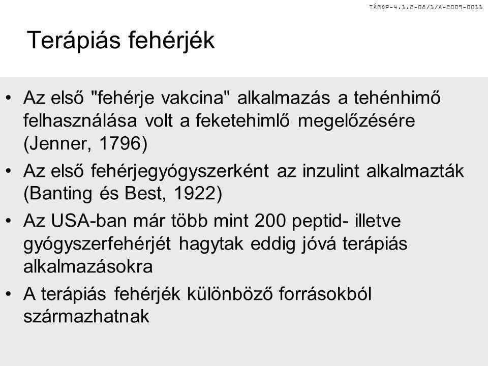 TÁMOP-4.1.2-08/1/A-2009-0011 Terápiás fehérjék – forrás szerint FehérjeEredeti forrás AlbuminEmberi donor vér InzulinSertés, marha pancreas VIII-as faktorEmberi donor vér IX-es faktor Emberi donor vér KalcitoninLazac Anti-venomLó vagy kecskevér β-glükocerebrozidázHuman placenta