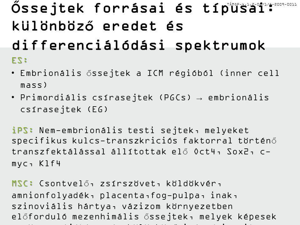 ŐSSEJT-TÍPUSOK, FENNTARTÁSUK ÉS HOMEOSZTÁZISUK Az orvosi biotechnológiai mesterképzés megfeleltetése az Európai Unió új társadalmi kihívásainak a Pécsi Tudományegyetemen és a Debreceni Egyetemen Azonosító szám: TÁMOP-4.1.2-08/1/A-2009-0011 Dr.