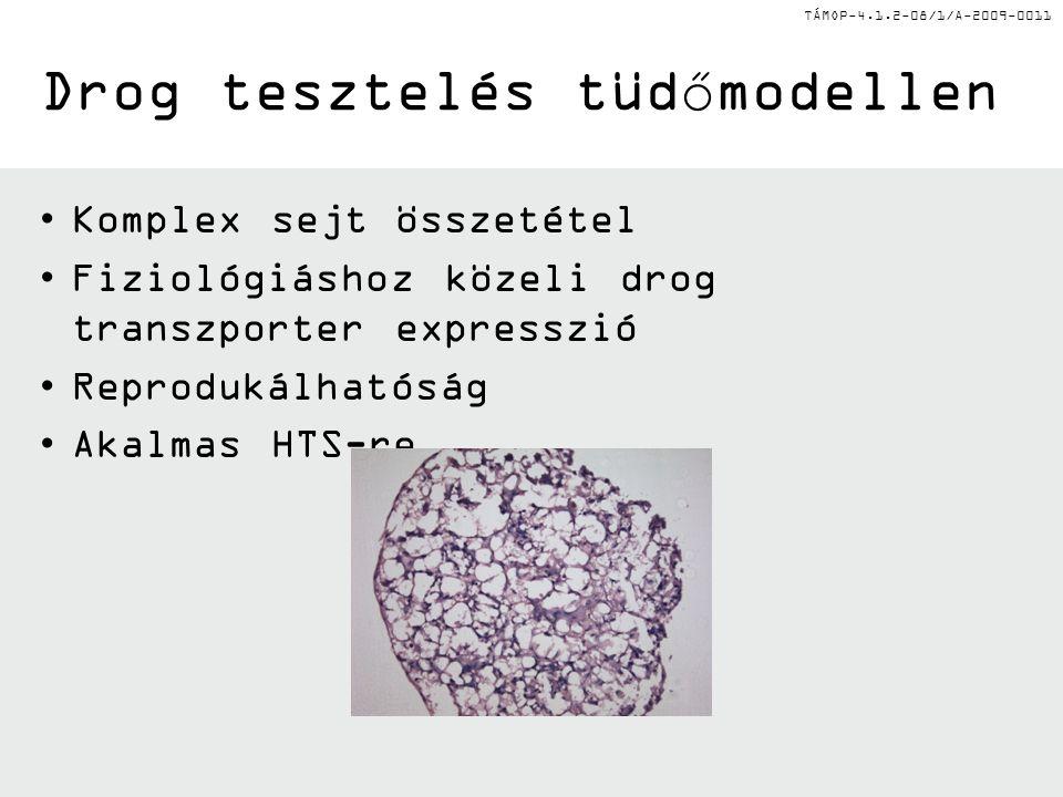 TÁMOP-4.1.2-08/1/A-2009-0011 Drog tesztelés tüdőmodellen Komplex sejt összetétel Fiziológiáshoz közeli drog transzporter expresszió Reprodukálhatóság Akalmas HTS-re