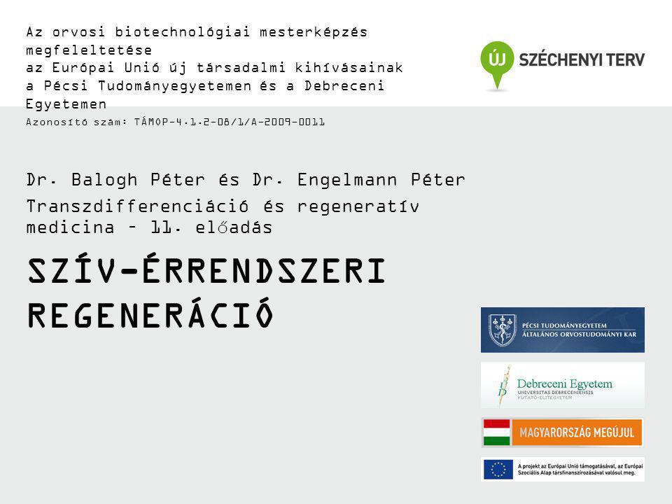 SZÍV-ÉRRENDSZERI REGENERÁCIÓ Az orvosi biotechnológiai mesterképzés megfeleltetése az Európai Unió új társadalmi kihívásainak a Pécsi Tudományegyeteme