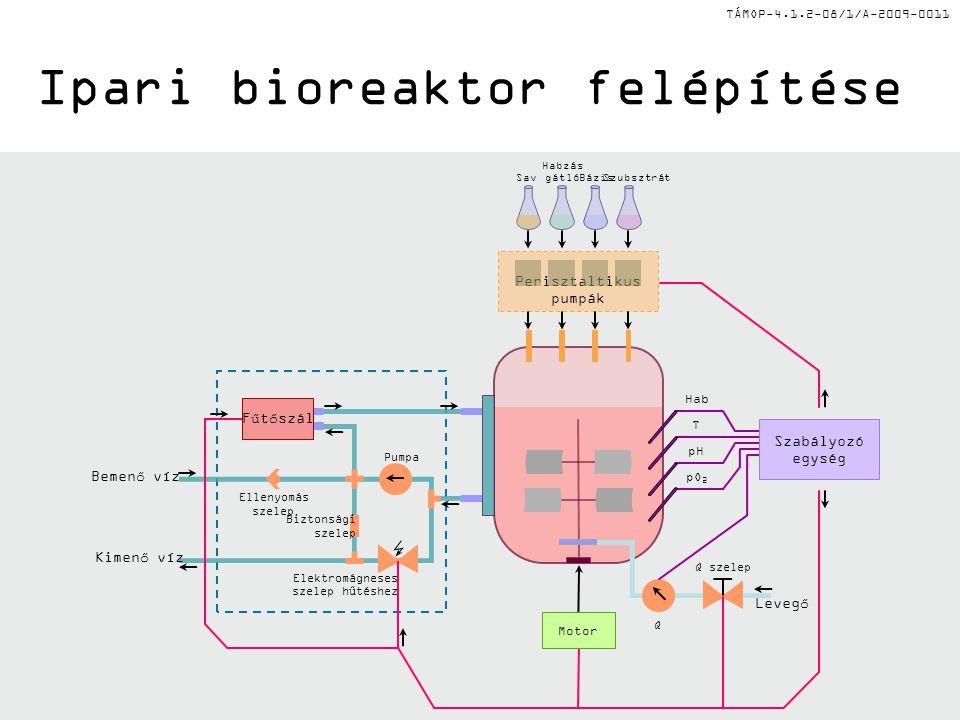 TÁMOP-4.1.2-08/1/A-2009-0011 II. Bioreakorok tervezési követelményei II. A tervezésnél fontos szempont az egyszerűség és könnyen tisztíthatóság Mélyed