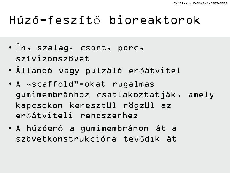 BIOREAKTOROK (2) Az orvosi biotechnológiai mesterképzés megfeleltetése az Európai Unió új társadalmi kihívásainak a Pécsi Tudományegyetemen és a Debreceni Egyetemen Azonosító szám: TÁMOP-4.1.2-08/1/A-2009-0011 Dr.