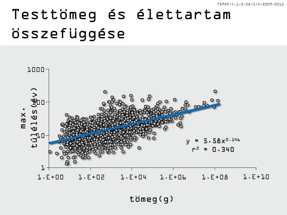 TÁMOP-4.1.2-08/1/A-2009-0011 y = 5.58x 0.146 r 2 = 0.340 max. túlélés(év) 1000 100 10 1 1.E+00 1.E+02 1.E+04 1.E+06 1.E+08 1.E+10 tömeg(g) Testtömeg é