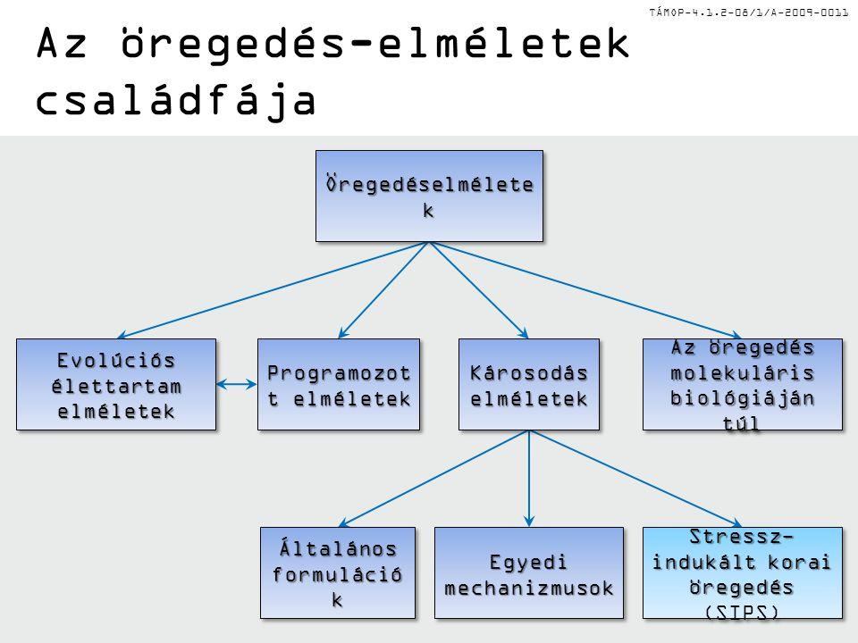 TÁMOP-4.1.2-08/1/A-2009-0011 Az öregedés-elméletek családfája Általános formuláció k Egyedi mechanizmusok Stressz- indukált korai öregedés Stressz- indukált korai öregedés (SIPS) Károsodás elméletek Evolúciós élettartam elméletek Az öregedés molekuláris biológiáján túl Programozot t elméletek Öregedéselmélete k