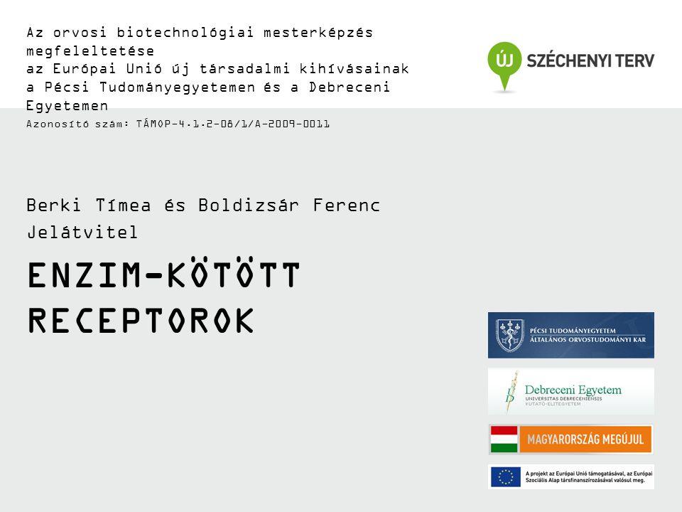TÁMOP-4.1.2-08/1/A-2009-0011 Enzim aktivitással rendelkező receptorok Receptor tirozin kinázok (RTK) –pl.