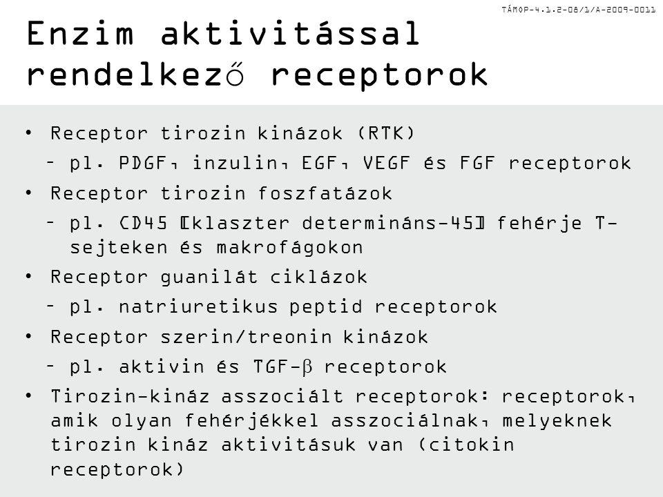 TÁMOP-4.1.2-08/1/A-2009-0011 I.Receptor osztályok I.