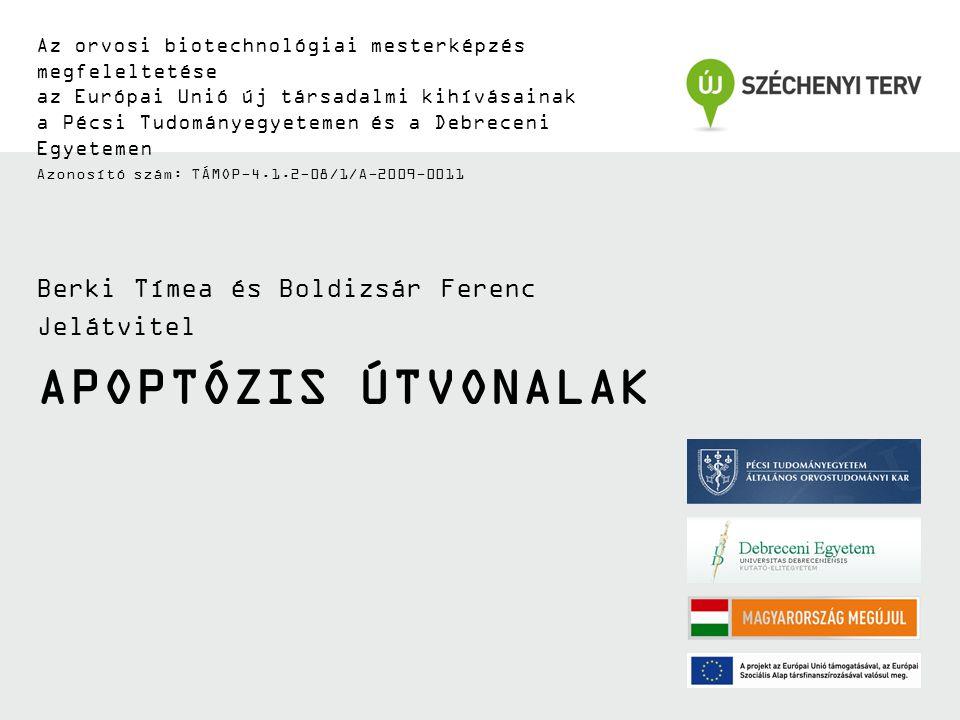 APOPTÓZIS ÚTVONALAK Az orvosi biotechnológiai mesterképzés megfeleltetése az Európai Unió új társadalmi kihívásainak a Pécsi Tudományegyetemen és a Debreceni Egyetemen Azonosító szám: TÁMOP-4.1.2-08/1/A-2009-0011 Berki Tímea és Boldizsár Ferenc Jelátvitel