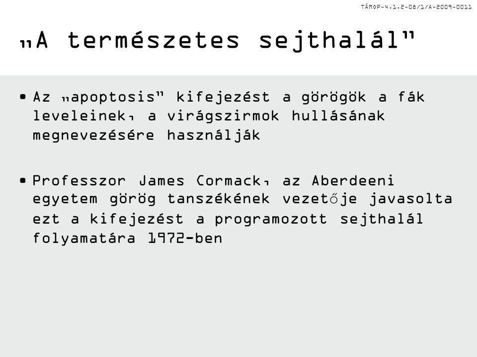 """TÁMOP-4.1.2-08/1/A-2009-0011 """"A természetes sejthalál Az """"apoptosis kifejezést a görögök a fák leveleinek, a virágszirmok hullásának megnevezésére használják Professzor James Cormack, az Aberdeeni egyetem görög tanszékének vezetője javasolta ezt a kifejezést a programozott sejthalál folyamatára 1972-ben"""