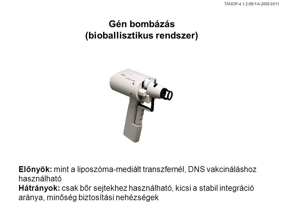 TÁMOP-4.1.2-08/1/A-2009-0011 Előnyök: mint a liposzóma-mediált transzfernél, DNS vakcináláshoz használható Hátrányok: csak bőr sejtekhez használható, kicsi a stabil integráció aránya, minőség biztosítási nehézségek Gén bombázás (bioballisztikus rendszer)