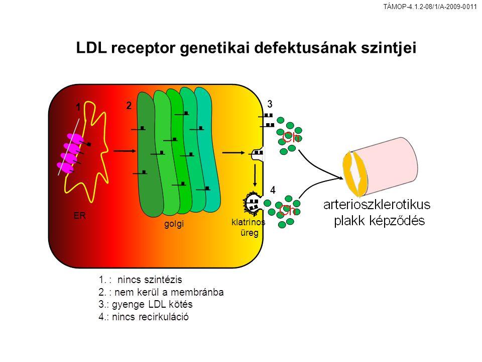 TÁMOP-4.1.2-08/1/A-2009-0011 LDL receptor genetikai defektusának szintjei