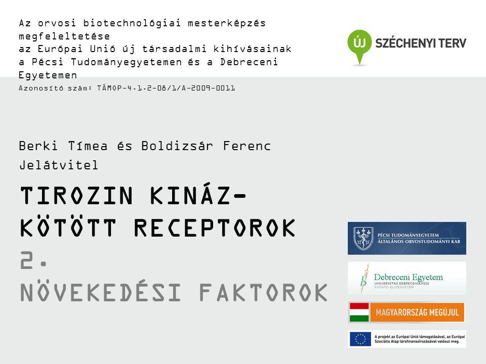 TIROZIN KINÁZ- KÖTÖTT RECEPTOROK 2.