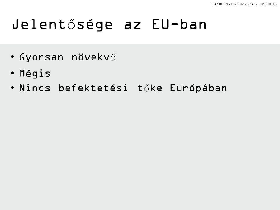 TÁMOP-4.1.2-08/1/A-2009-0011 Jelentősége az EU-ban Gyorsan növekvő Mégis Nincs befektetési tőke Európában