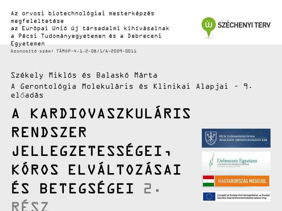 Az orvosi biotechnológiai mesterképzés megfeleltetése az Európai Unió új társadalmi kihívásainak a Pécsi Tudományegyetemen és a Debreceni Egyetemen Azonosító szám: TÁMOP-4.1.2-08/1/A-2009-0011 A KARDIOVASZKULÁRIS RENDSZER JELLEGZETESSÉGEI, KÓROS ELVÁLTOZÁSAI ÉS BETEGSÉGEI 2.