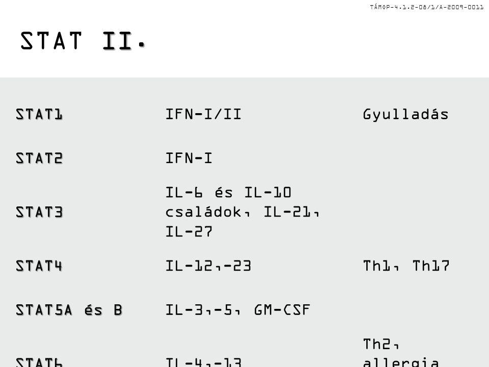 TÁMOP-4.1.2-08/1/A-2009-0011 II. STAT II.STAT1IFN-I/IIGyulladás STAT2IFN-I STAT3 IL-6 és IL-10 családok, IL-21, IL-27 STAT4IL-12,-23Th1, Th17 STAT5A é
