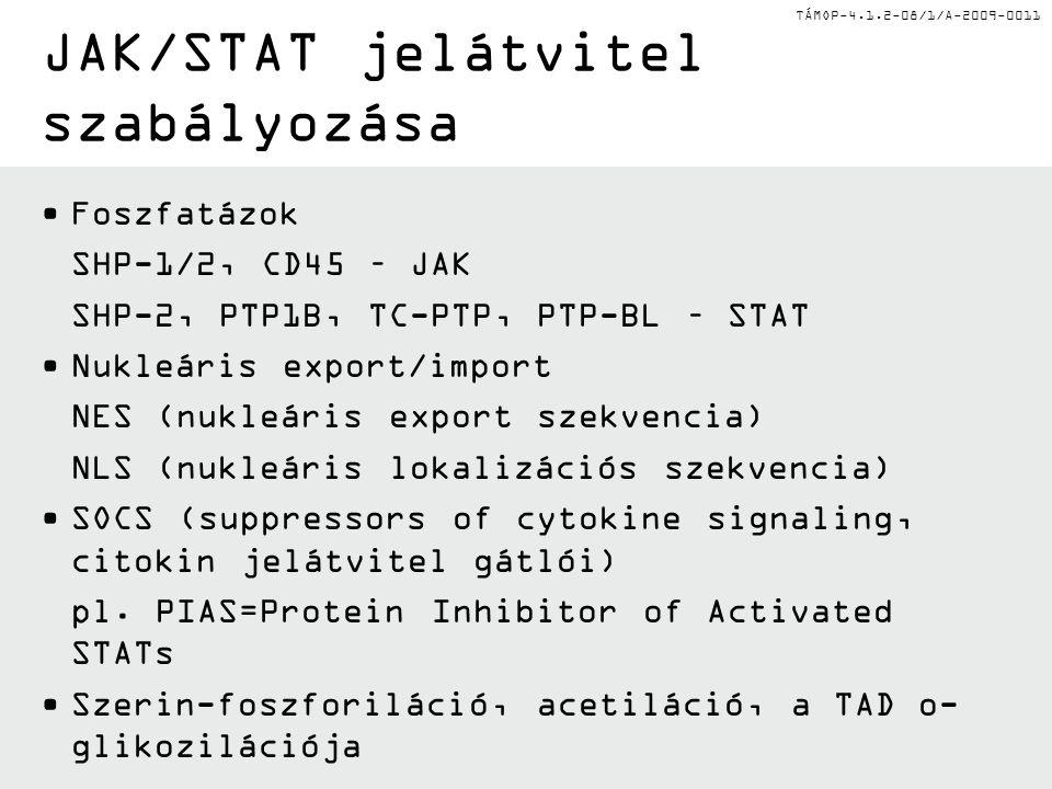 TÁMOP-4.1.2-08/1/A-2009-0011 JAK/STAT jelátvitel szabályozása Foszfatázok SHP-1/2, CD45 – JAK SHP-2, PTP1B, TC-PTP, PTP-BL – STAT Nukleáris export/import NES (nukleáris export szekvencia) NLS (nukleáris lokalizációs szekvencia) SOCS (suppressors of cytokine signaling, citokin jelátvitel gátlói) pl.