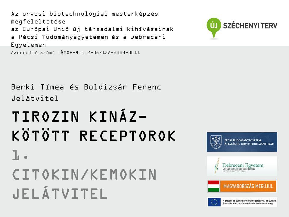 TIROZIN KINÁZ- KÖTÖTT RECEPTOROK 1. CITOKIN/KEMOKIN JELÁTVITEL Az orvosi biotechnológiai mesterképzés megfeleltetése az Európai Unió új társadalmi kih
