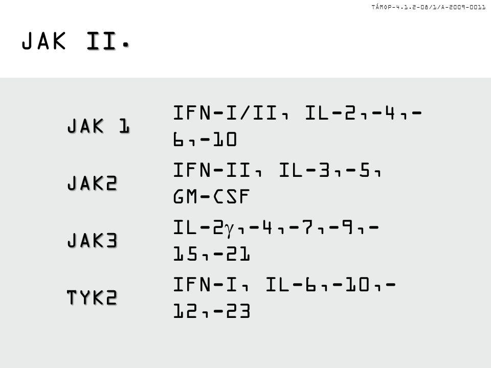 TÁMOP-4.1.2-08/1/A-2009-0011 II. JAK II. JAK 1 IFN-I/II, IL-2,-4,- 6,-10 JAK2 IFN-II, IL-3,-5, GM-CSF JAK3 IL-2 ,-4,-7,-9,- 15,-21 TYK2 IFN-I, IL-6,-