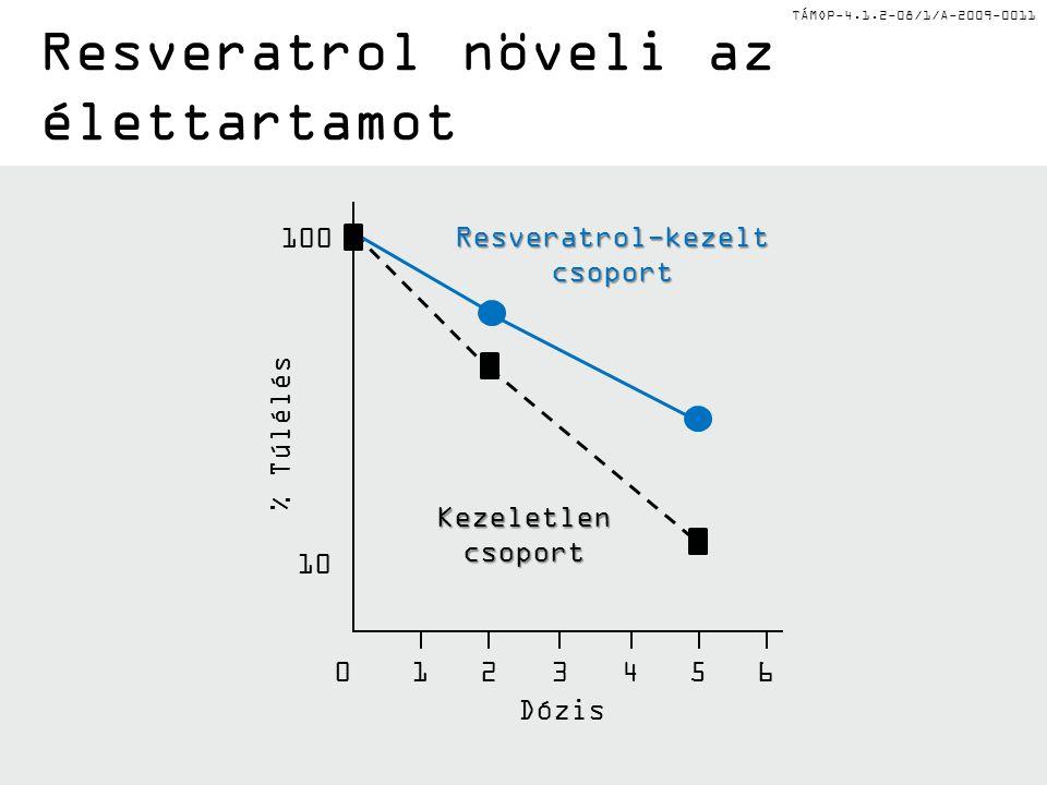 TÁMOP-4.1.2-08/1/A-2009-0011 Resveratrol-kezelt csoport Kezeletlen csoport Dózis % Túlélés 0123456 10 100 Resveratrol növeli az élettartamot