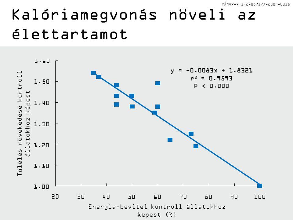 TÁMOP-4.1.2-08/1/A-2009-0011 Energia-bevitel kontroll állatokhoz képest (%) 1.00 1.10 1.20 1.30 1.40 1.50 1.60 20 30405060708090100 y = -0.0083x + 1.8321 r 2 = 0.9593 P < 0.000 Túlélés növekedése kontroll állatokhoz képest Kalóriamegvonás növeli az élettartamot