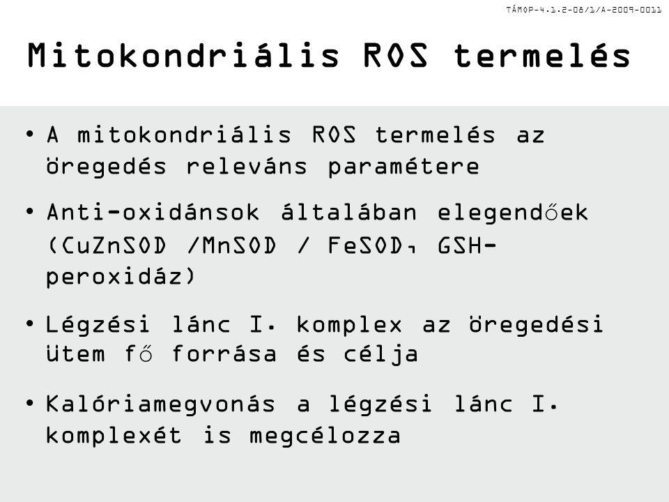 TÁMOP-4.1.2-08/1/A-2009-0011 A mitokondriális ROS termelés az öregedés releváns paramétere Anti-oxidánsok általában elegendőek (CuZnSOD /MnSOD / FeSOD