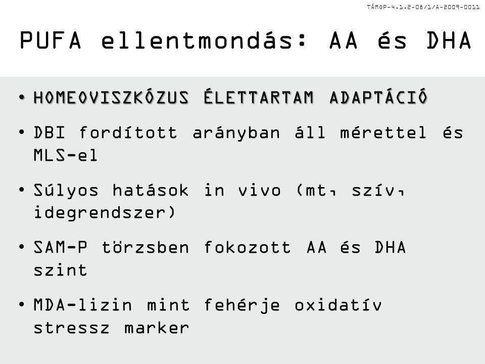 TÁMOP-4.1.2-08/1/A-2009-0011 HOMEOVISZKÓZUS ÉLETTARTAM ADAPTÁCIÓHOMEOVISZKÓZUS ÉLETTARTAM ADAPTÁCIÓ DBI fordított arányban áll mérettel és MLS-el Súly