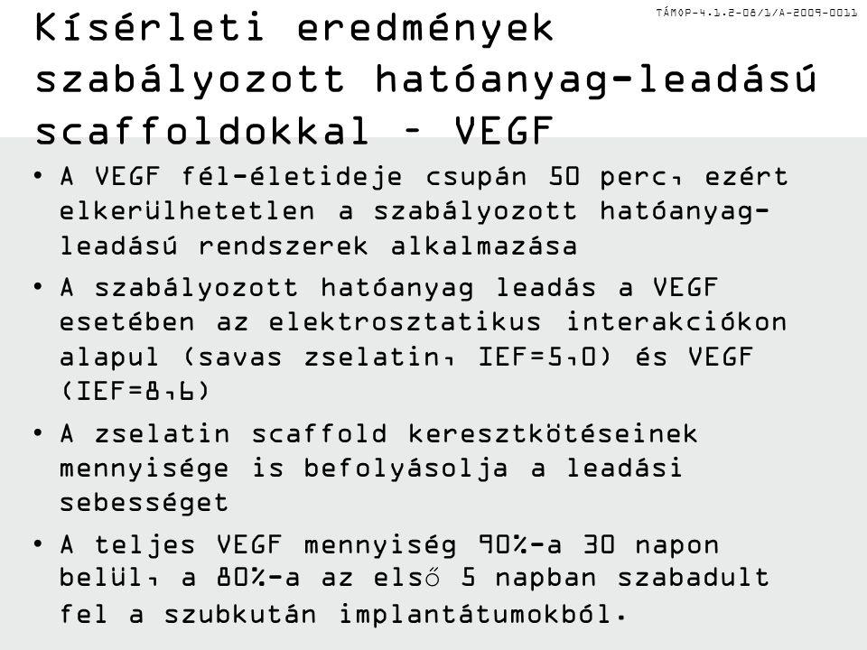 TÁMOP-4.1.2-08/1/A-2009-0011 Kísérleti eredmények szabályozott hatóanyag-leadású scaffoldokkal – VEGF A VEGF fél-életideje csupán 50 perc, ezért elkerülhetetlen a szabályozott hatóanyag- leadású rendszerek alkalmazása A szabályozott hatóanyag leadás a VEGF esetében az elektrosztatikus interakciókon alapul (savas zselatin, IEF=5,0) és VEGF (IEF=8,6) A zselatin scaffold keresztkötéseinek mennyisége is befolyásolja a leadási sebességet A teljes VEGF mennyiség 90%-a 30 napon belül, a 80%-a az első 5 napban szabadult fel a szubkután implantátumokból.