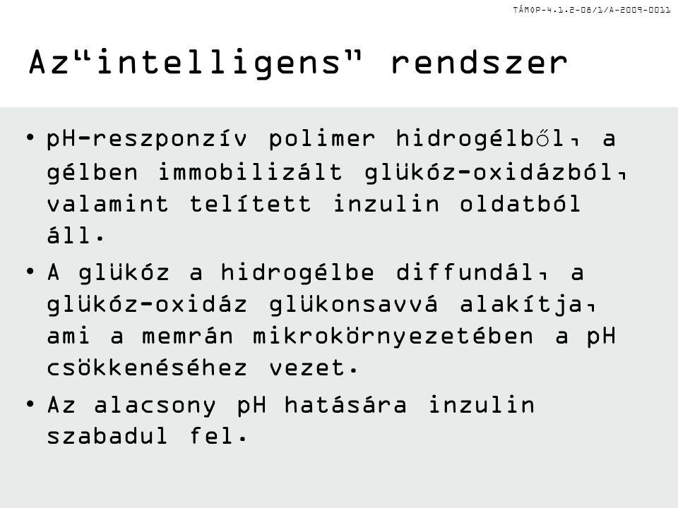 """TÁMOP-4.1.2-08/1/A-2009-0011 Az""""intelligens"""" rendszer pH-reszponzív polimer hidrogélből, a gélben immobilizált glükóz-oxidázból, valamint telített inz"""