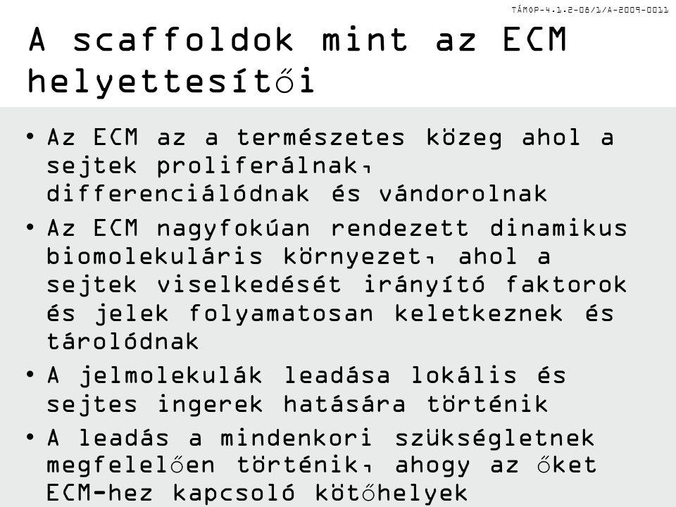 TÁMOP-4.1.2-08/1/A-2009-0011 A scaffoldok mint az ECM helyettesítői Az ECM az a természetes közeg ahol a sejtek proliferálnak, differenciálódnak és vándorolnak Az ECM nagyfokúan rendezett dinamikus biomolekuláris környezet, ahol a sejtek viselkedését irányító faktorok és jelek folyamatosan keletkeznek és tárolódnak A jelmolekulák leadása lokális és sejtes ingerek hatására történik A leadás a mindenkori szükségletnek megfelelően történik, ahogy az őket ECM-hez kapcsoló kötőhelyek degradálódnak