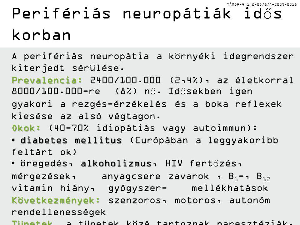 TÁMOP-4.1.2-08/1/A-2009-0011 Perifériás neuropátiák idős korban A perifériás neuropátia a környéki idegrendszer kiterjedt sérülése. Prevalencia: Preva