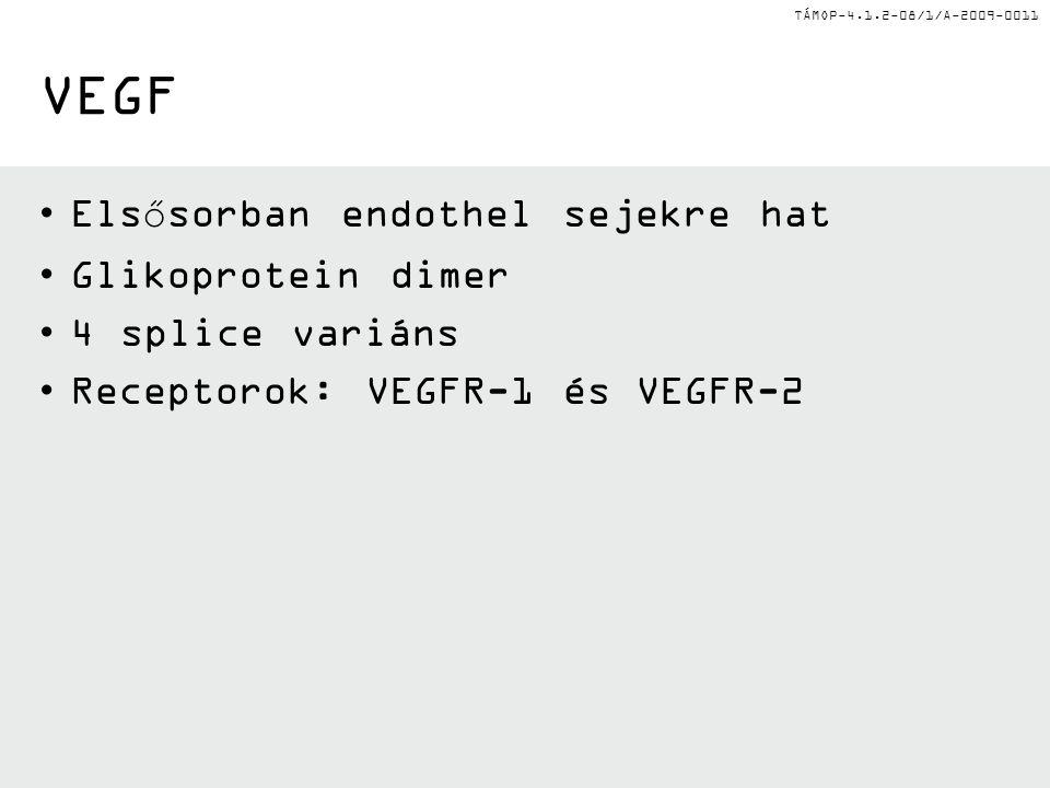 TÁMOP-4.1.2-08/1/A-2009-0011 VEGF Elsősorban endothel sejekre hat Glikoprotein dimer 4 splice variáns Receptorok: VEGFR-1 és VEGFR-2