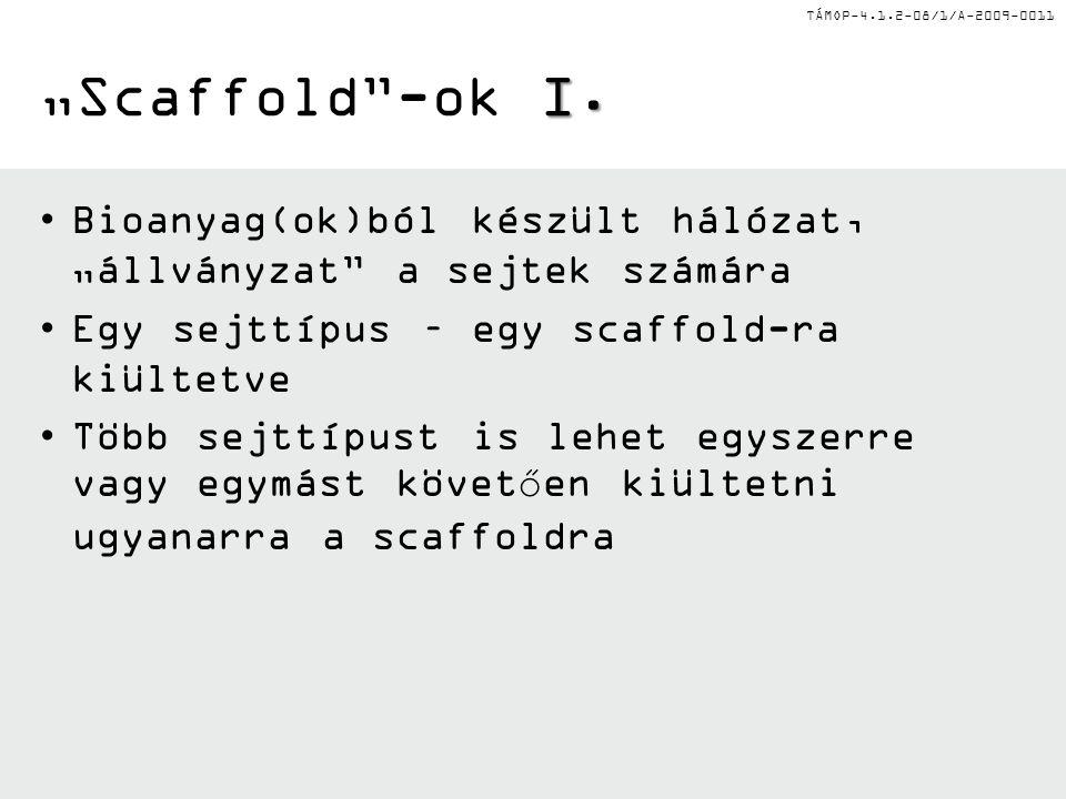 """TÁMOP-4.1.2-08/1/A-2009-0011 I. """"Scaffold -ok I."""