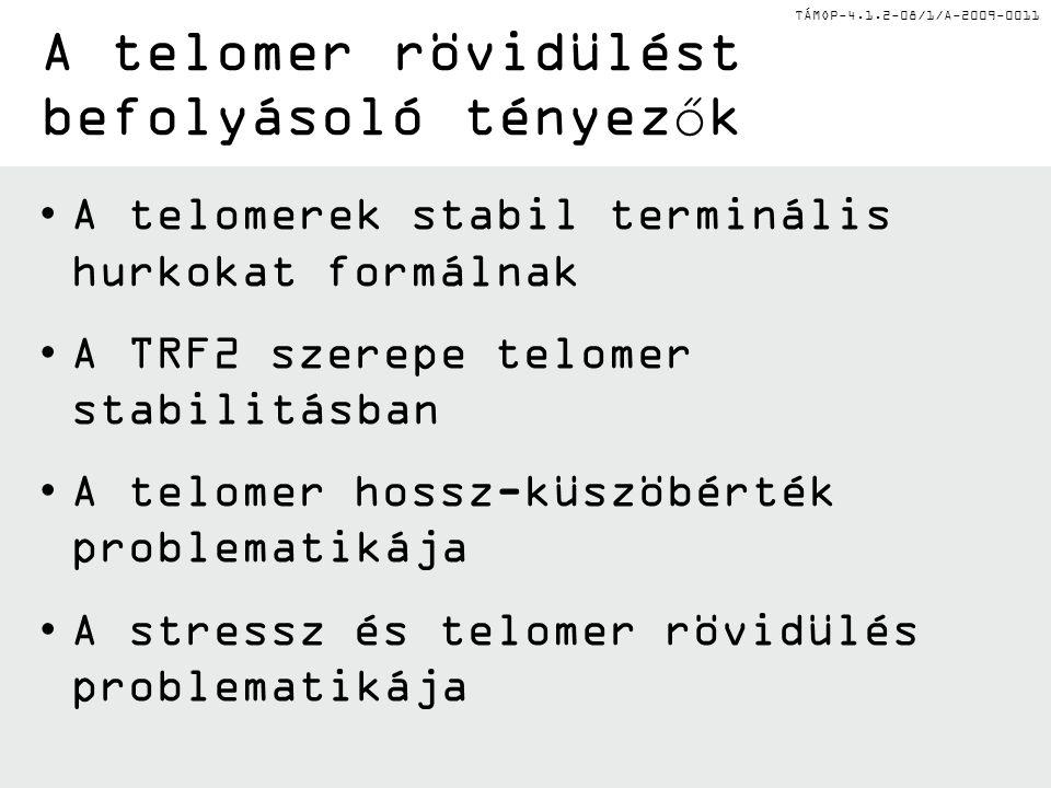 TÁMOP-4.1.2-08/1/A-2009-0011 A telomerek stabil terminális hurkokat formálnak A TRF2 szerepe telomer stabilitásban A telomer hossz-küszöbérték problem