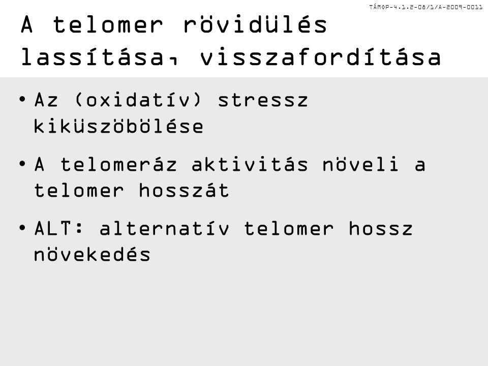 TÁMOP-4.1.2-08/1/A-2009-0011 Az (oxidatív) stressz kiküszöbölése A telomeráz aktivitás növeli a telomer hosszát ALT: alternatív telomer hossz növekedé
