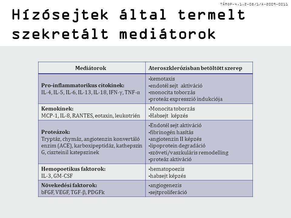 TÁMOP-4.1.2-08/1/A-2009-0011 Egyéb hízósejt aktivátorok MIP-1  : makrofág gyulladásos kemokin C3a, C5a anafilatoxinok: komplement Neuropeptidek: P-anyag, szomatosztatin, VIP Fc  R - IgG