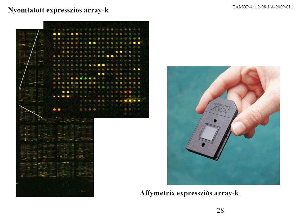 28 Nyomtatott expressziós array-k Affymetrix expressziós array-k TÁMOP-4.1.2-08/1/A-2009-011