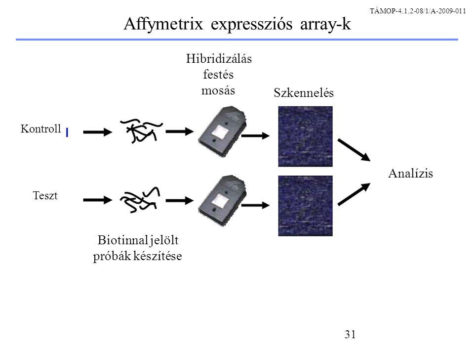 31 Kontroll Teszt Biotinnal jelölt próbák készítése Hibridizálás festés mosás Szkennelés Analízis Affymetrix expressziós array-k TÁMOP-4.1.2-08/1/A-2009-011