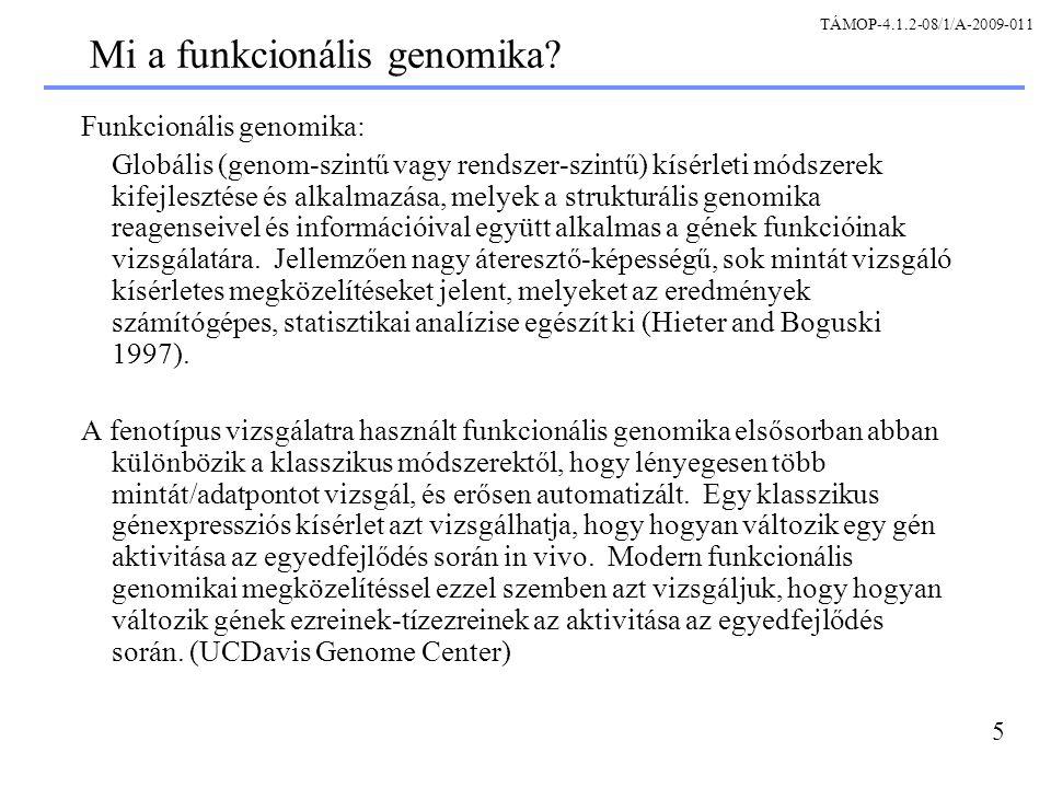 5 Mi a funkcionális genomika.