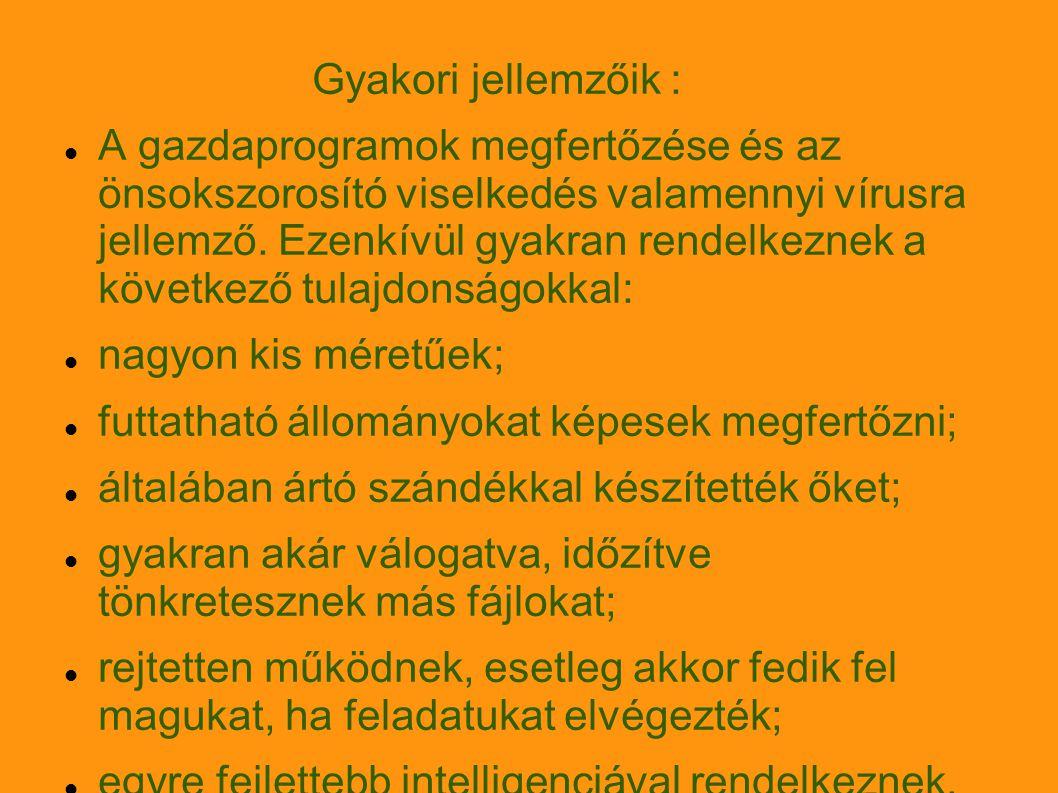 Alaptípusaik : EXE-COM vírusok BOOT-vírusok MR-vírusok New Exe vírusok Multi platform vírusok Önátíró (polimorf) vírusok (ez a vírus egyedi programrészletei alapján való azonosítást nehezíti meg) Oligomorf vírusok Metamorf vírusok E-mail vírusok