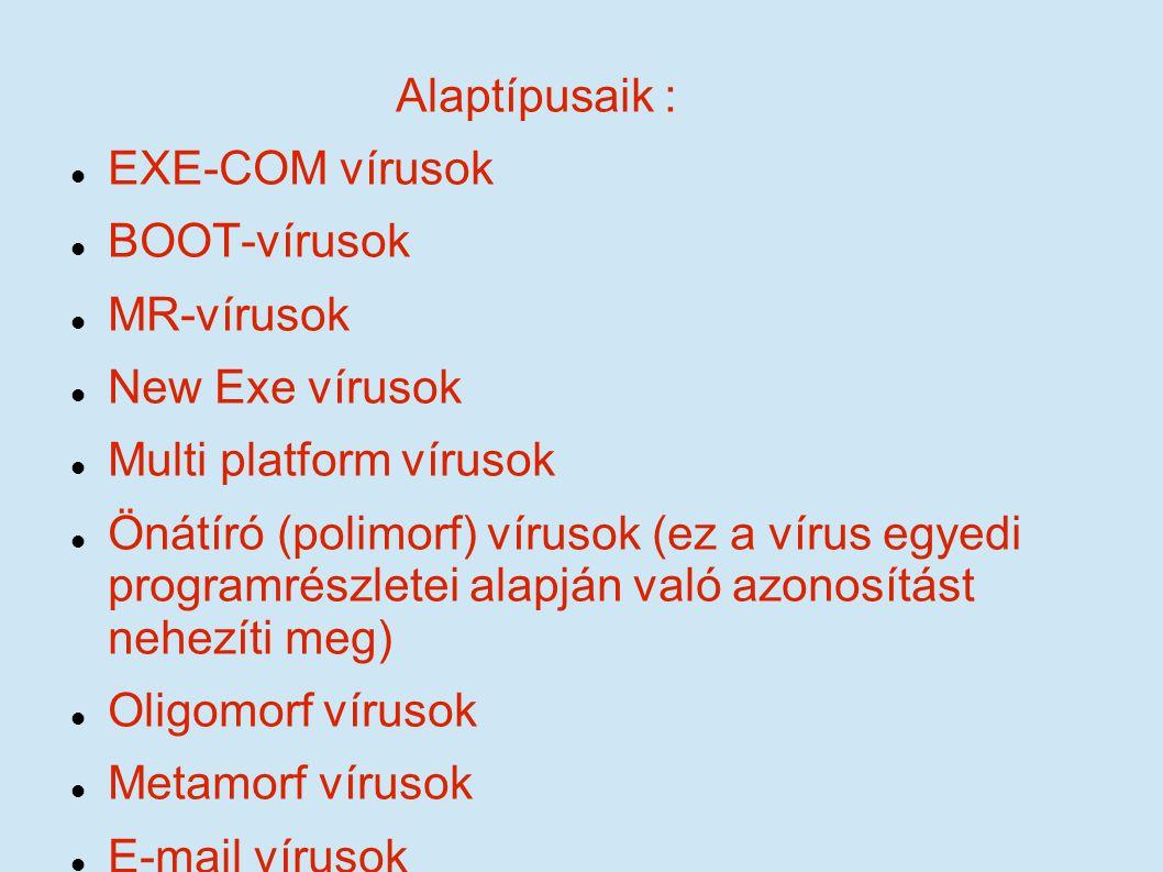 Alaptípusaik : EXE-COM vírusok BOOT-vírusok MR-vírusok New Exe vírusok Multi platform vírusok Önátíró (polimorf) vírusok (ez a vírus egyedi programrés