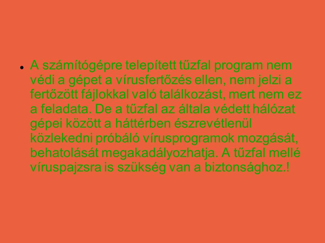 Vírus vagy más kártevő azonosítása esetén nem szabad pánikba esni, kapkodni.