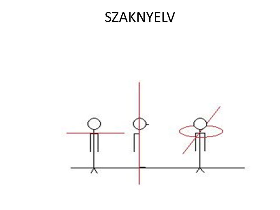 SZAKNYELV